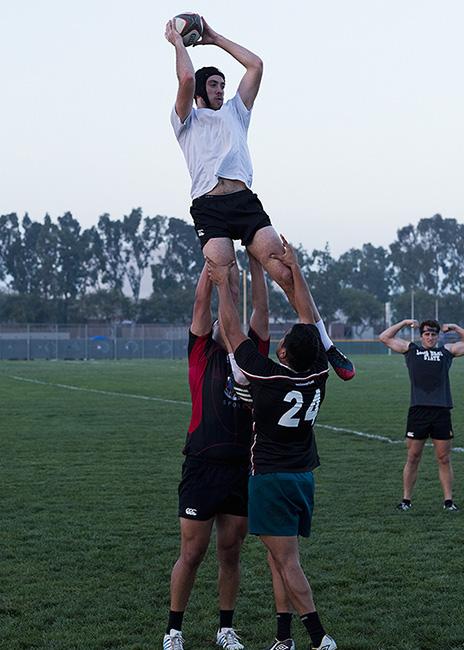 http://www.dannyzapalac.com/files/gimgs/103_rugbystandup30133.jpg