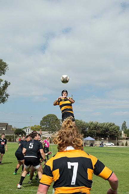 http://www.dannyzapalac.com/files/gimgs/103_rugbythrowin3892.jpg